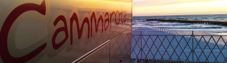 cammarota_slide_06